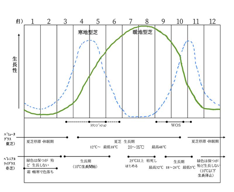一般的なWOSの芝種別生長曲線
