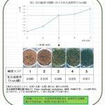 目視緑度と、光合成収率の関係(サンプル:スクラム)について – 独自開発天然芝【スクラム】